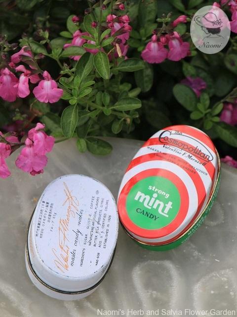 コスモポリタンのドロップ缶 ミント味