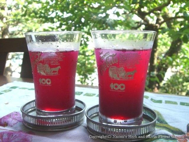 blog27 赤紫蘇のジュース