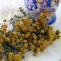 野菜だけにしておくのはもったいないシュンギクの花のドライフラワー