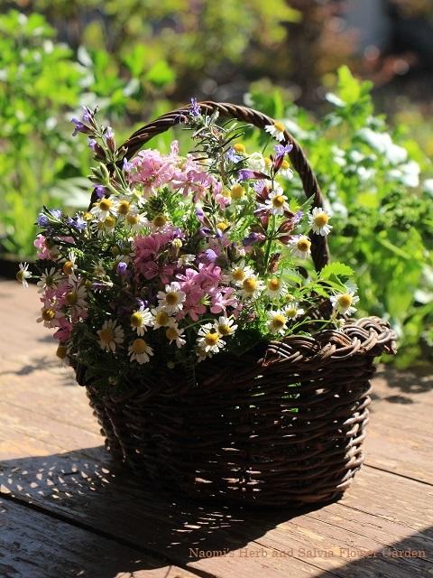 今咲く庭の花