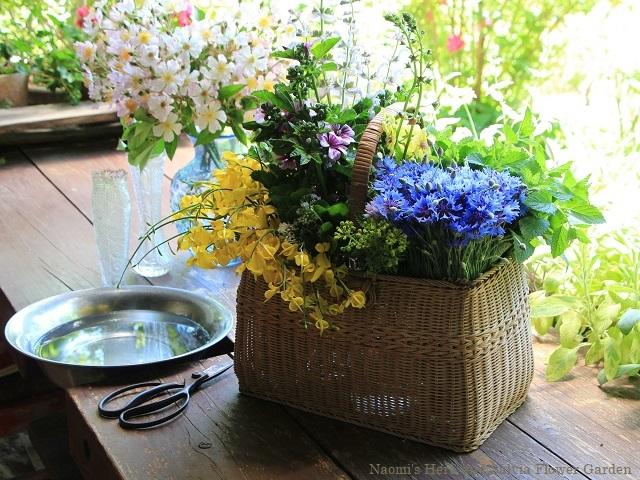 水揚げの済んだ庭の花