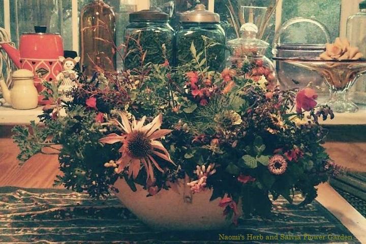 陽だまりの花とハーブを摘んで