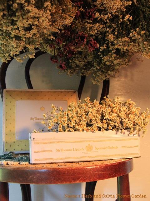 ハーブクラフト花材