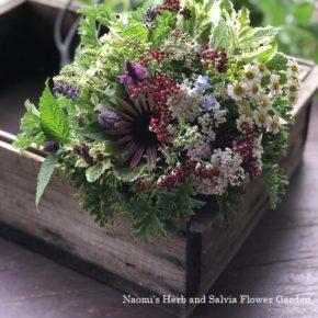 食卓にハーブの花を