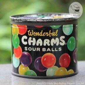 チャームス サワーボールキャンディーのビンテージ缶