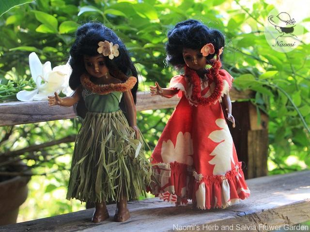 ビンテージ ハワイアンドール Elsie Denney Hawaiian Dolls