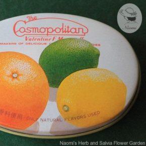 コスモポリタンのドロップ缶②