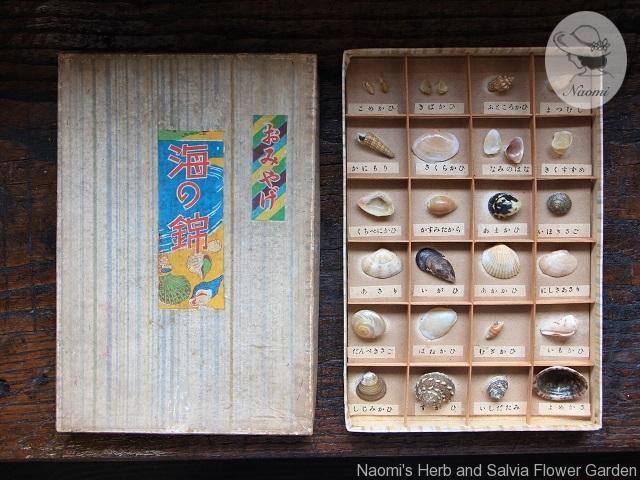 昭和レトロなおみやげの貝
